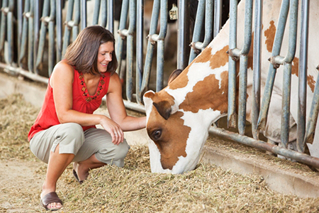Grass to Glass: Dairy Farmers' Commitment to Sustainability